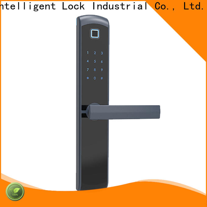 Custom house lock with code tdt1550 factory price for Villa