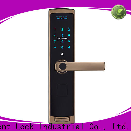 Level keypad keyless automatic door lock supplier for Villa