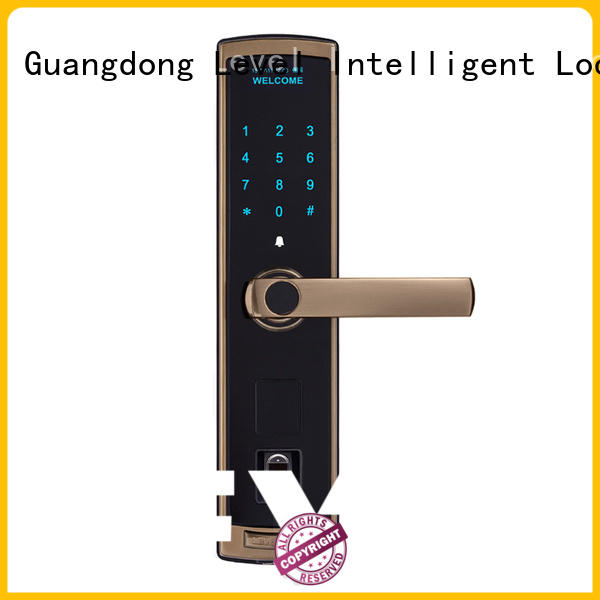 Level alloy keypad door lock factory price for residential