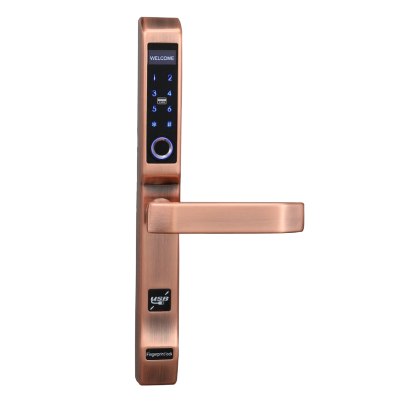 Best keyless front door handles rfid on sale for Villa-1