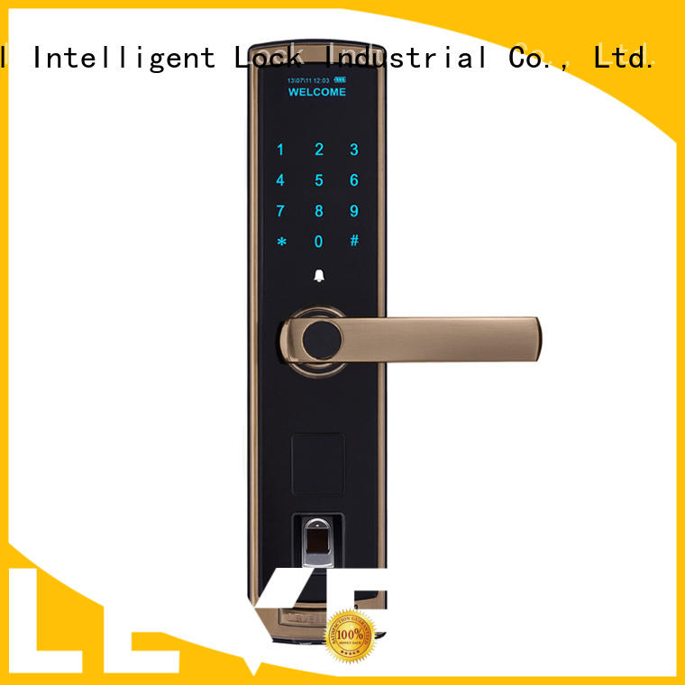 Level painting electronic door locks for homes wholesale for Villa