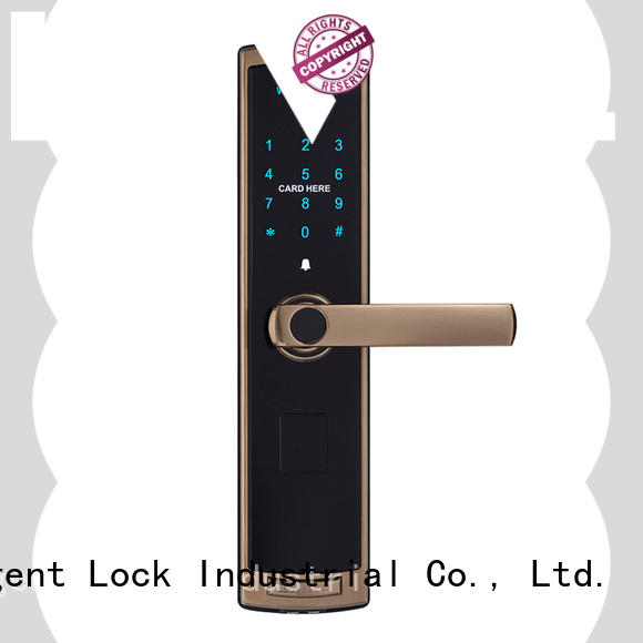 Residential smart card touch keypad door lock fashion style TDT-1380