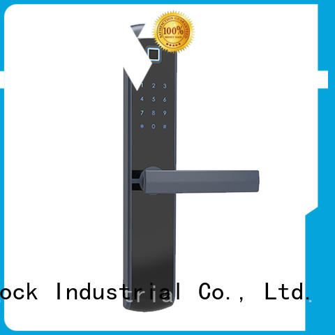 Level lock smart card lock supplier for Villa